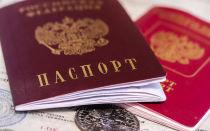 Проверка готовности гражданства РФ по фамилии онлайн бесплатно