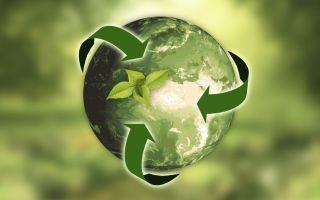 Изменение экологического класса в ПТС