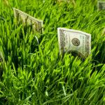 Стоимость межевание садового участка